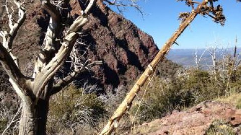 Backpacking near Payson: A Bad Night for the Super-Pencil